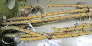 300 KVA in 6 phases of 115Volt AC power cables cut and shorted. AC (Photo: ATSB QF32 Report)
